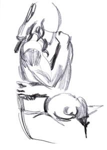 sketchbook_1508230_03